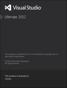 Visual Studio Ultimate - Loading screen
